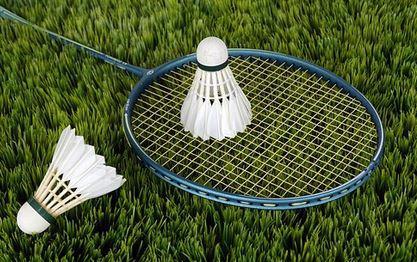 Badmintonschläger kaufen